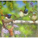 Птички в саду