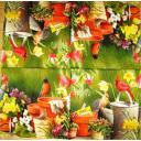 Птички и весенние цветы