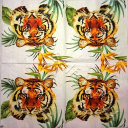 тигр 25х25