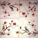 птички на магнолии