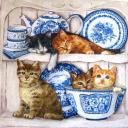 котята и синяя посуда