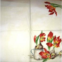 тюльпаны  Мона Свард