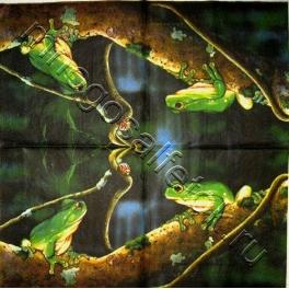 жук и жаба , раритет