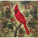 кардинал на сосне