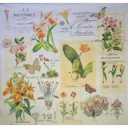 винтажная ботаника