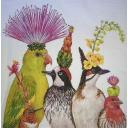 Пять чудо птиц