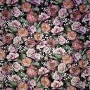 винтажный фон роз