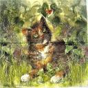 Кот в траве.  AVEC