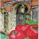 томаты Вероны