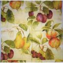 фруктовый фон 33х33