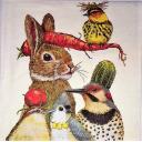 Vicki Sawyer. Заяц  и птицы