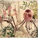 Велосипед в Париже