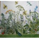 насекомые и травы