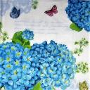 Гортензия голубая  и бабочки