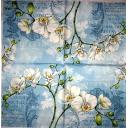 белые орхидеи на голубом  узоре