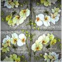 белые орхидеи на сером   узоре