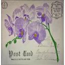 Сиреневые орхидеи Post Card