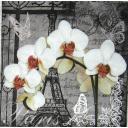 Париж и орхидеи
