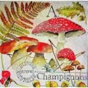грибы и оса