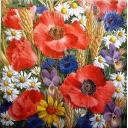 фон маково- цветочный WIDA