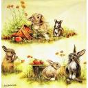 кролики с яблочками