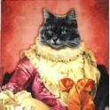 кошка  баронесса