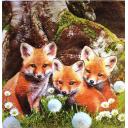 три лисенка
