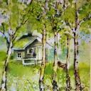 домик в березовом лесу