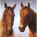 Лошадки. ASHDENE Австралия