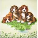 Четыре щенка