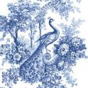 синий павлин