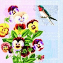 птичка на анютках