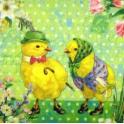 парочка цыплят