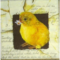 цыпленок на письме
