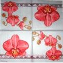 MOLCA. Орхидея розовая.