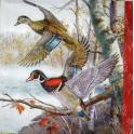 взлетающие утки