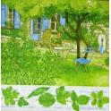 Летний сад.