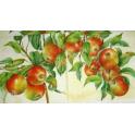 Яблочки наливные.