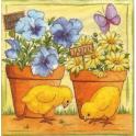 цветы в горшках и цыплята