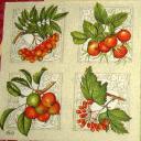 ягодки с узорчиком