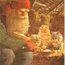 Рождественский Ниссе и 3 котенка