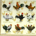 куриная селекция 33 х 33