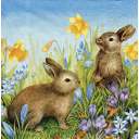 зайчики и весенние цветочки