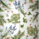цветы и травы с ярлычками