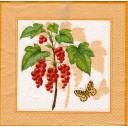 Смородина и бабочка