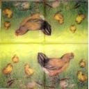 курочка и цыплята