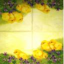 цыплята в фиалках