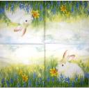 Кролик и мускари