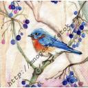 Птичка с голубыми ягодками