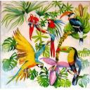 Много попугаев
